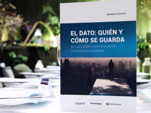 Almacenamiento Corporativo en España 2017