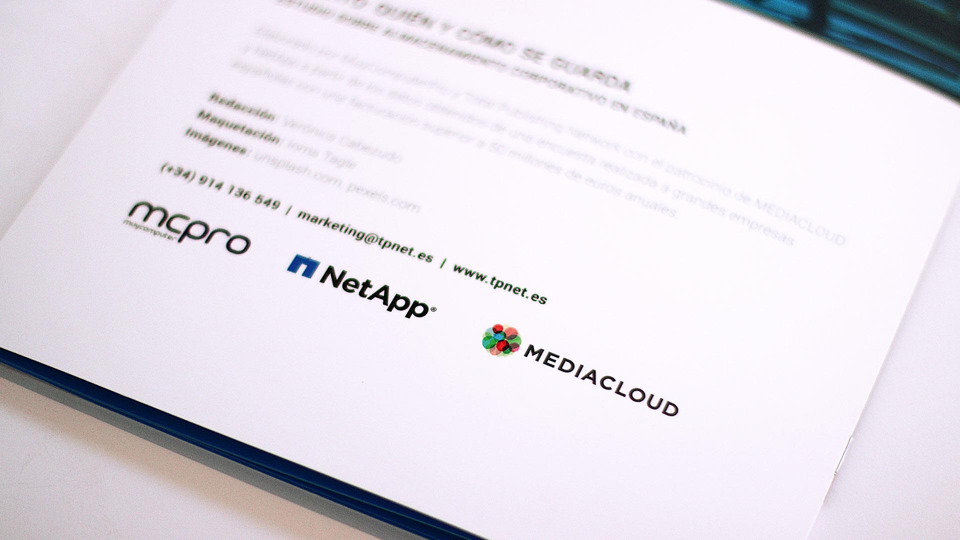 netapp-mediacloud-content-marketing-informe-resumen-ejecutivo-ebook-2017-21
